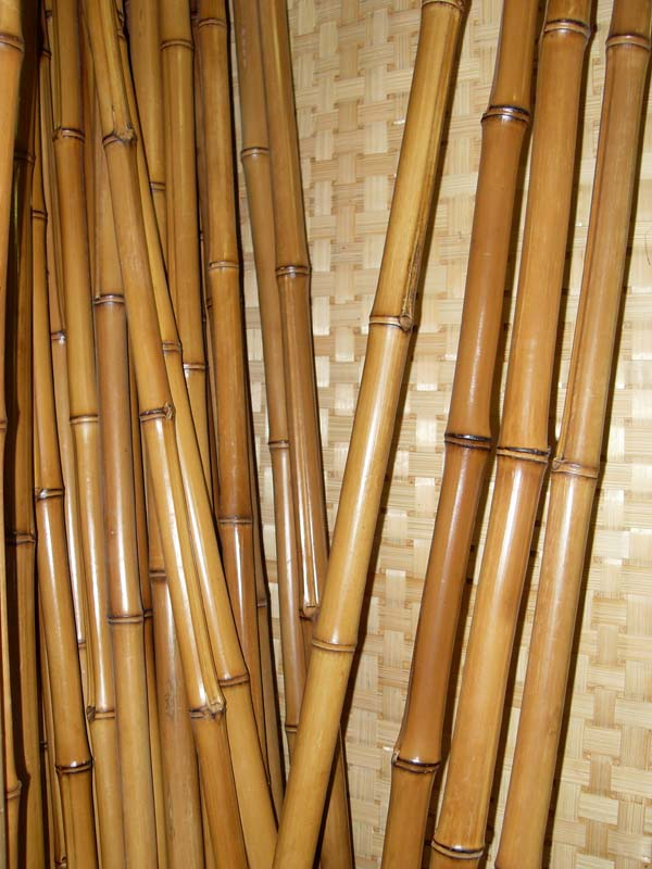 How to colour bamboo poles into natural green